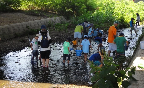 天白川水生生物調査